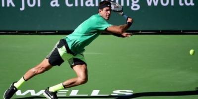 Del Potro derrotó a Haase y ya piensa en Federer